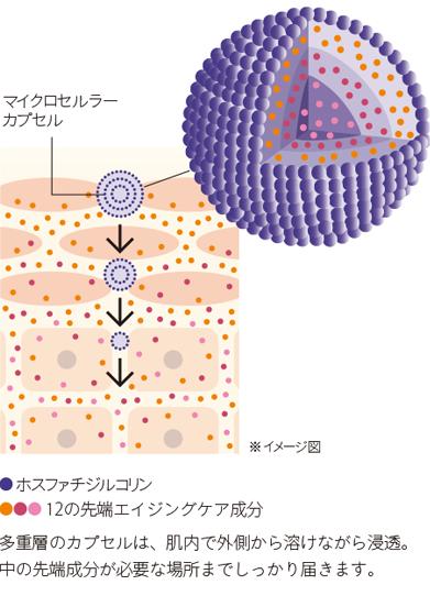 マイクロセルラーカプセル